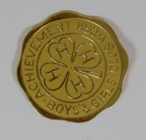 Image of 9654-203 - Seal, 4-H Achievement