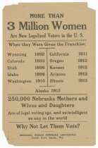Image of RG1073.AM.B2,S4,F11,I1 - RG1073 Nebraska Woman Suffrage Association
