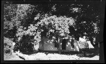 Image of RG4290.PH0-000844 - Negative, Sheet Film