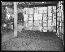Image of RG3882.PH0032C-0271-2 - Negative, Sheet Film