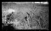 Image of RG4290.PH0-002152 - Negative, Sheet Film