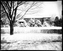 Image of RG3882.PH0032H-0560-02 - Negative, Sheet Film
