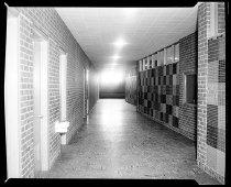 Image of RG2183.PH001954-001015-4 - Negative, Sheet Film