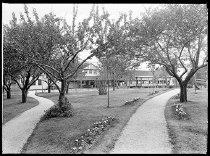 Image of RG3882.PH0032B-0377-2 - Negative, Sheet Film