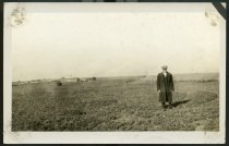 Image of RG0716.PH000013-000049 - Postcard, Picture