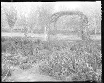 Image of RG3882.PH0049-0057 - Negative, Sheet Film