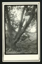 Image of RG3542.PH000018-000001 - Print, Photographic