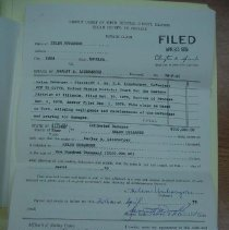 Image of Case File
