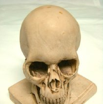 Image of 2011.01 - Skull and book paperweight