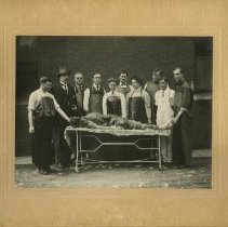 Image of Outdoor Dissection Class