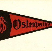 Image of 2000.24 - Osteopathy Pennant