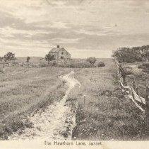 Image of The Hawthorn Lane Postcard