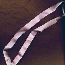 Image of 2014.49 - Craig Phelps Medallion on Purple Ribbon