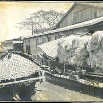 Image of Hemp in Cascos