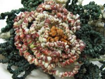 Image of Shell Flower Bouquet