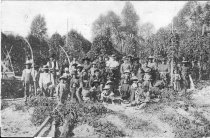 Image of Hop Pickers - Print, Photographic