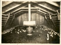 Image of Tancred's Chicken Farm - Print, Photographic