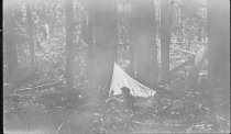 Image of Camping - Print, Photographic