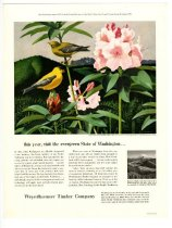 Image of Weyerhaeuser Publicity Posters - Clipping, Magazine