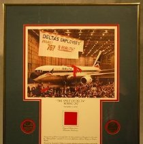 Image of Boeing 767 The Spirit of Delta Poster and Medallions