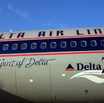 Image of The Spirit of Delta, 75th Anniversary Livery, 2004 - detail