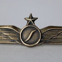 Image of Southern Airways Captain's Insignia