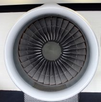 Image of Delta Rolls Royce RB211 Engine Fan and Cowl
