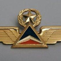 Image of Delta Captain Insignia - 1972-2001