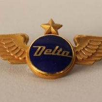 "Image of Delta ""Blue Ball"" First Officer Insignia"