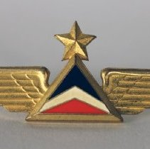 Image of Delta First Officer Insignia