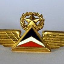 Image of Delta Captain Insignia