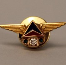 Image of Delta Service Pin 1970s (30 Year)