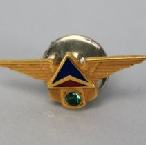 Image of Delta Service Pin 1970s (5 Year)
