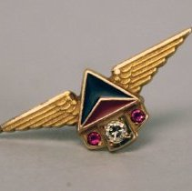 Image of Delta Service Pin 1970s (25 Year)