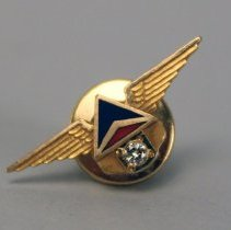 Image of Delta Service Pin 1970s (10 Year)