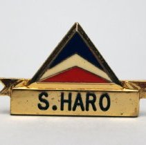 Image of Delta ACS Name Badge  - 1976-1980