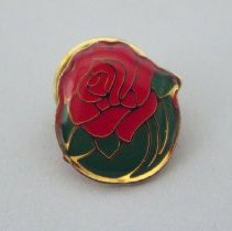 Image of Pasadena Tournament of Roses Pin - 01/1991