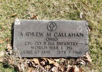 Image of Andrew M Callahan Collection - Veteran record
