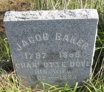 Image of Jacob Baker Collection - Veteran record