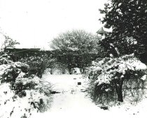 Image of 2009.15.6457 - St. John's Churchyard in Snow