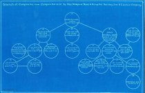 Image of 2011.22.337 - Organizational Chart of the Newport News & Hampton Railway Gas & Electric Company (Chambers Collection Maps & Surveys, File Drawer C)
