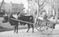 Image of 1956.11.15 - Aunt Charlotte at Hampton Institute campus