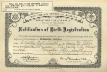 Image of CC2015.12.1 - Birth Certificate of Dorothy B. McCoy