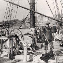 Image of Loading ice in Rockport circa 1904