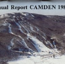 Image of Report, Annual - CPL 2008.161