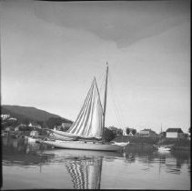 "Image of ""Sailboat in Camden harbor, October 1900."""