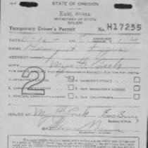 Image of Temporary Driver's Permit