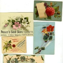 Image of Paper, illustrations