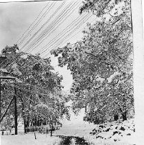 Image of First snow 1910