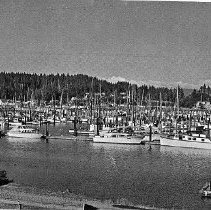 Image of Port Basin Ilwaco, Washington